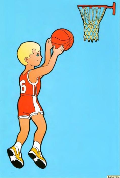 Картинки летние виды спорта