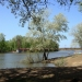 парк  река Чаган