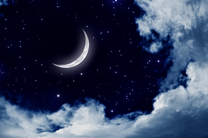 4881141_night_3.jpg