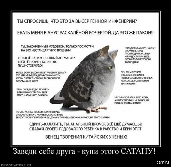 http://img1.liveinternet.ru/images/foto/c/9/apps/2/186/2186191_739424_zavedi-sebe-druga-kupi-etogo-satanu_1.jpg