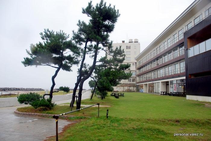 Еще лужайка между отелем и морем