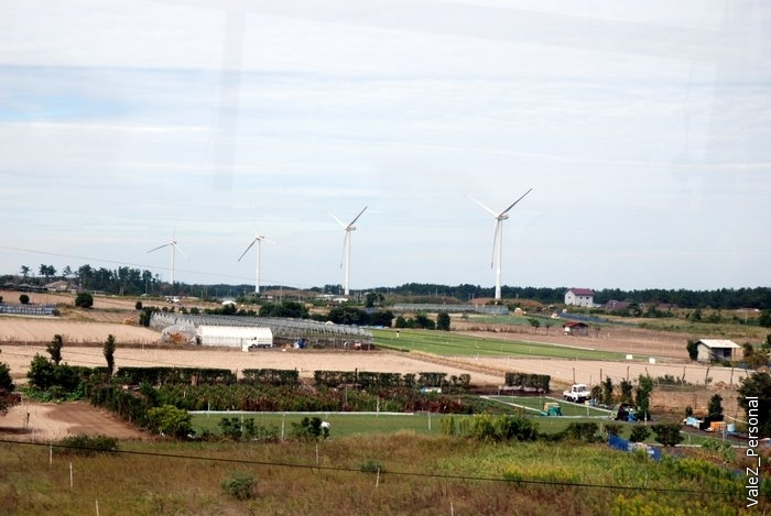 Ветряки и японское сельское хозяйство.