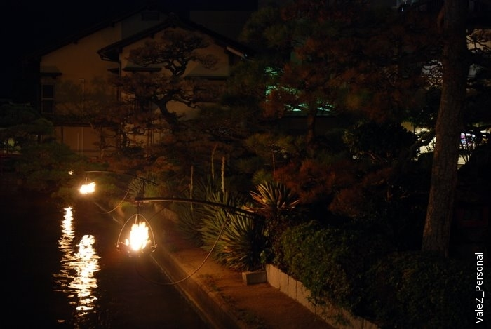 Над озером горят живые огни