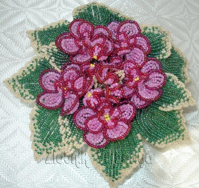 схемы цветов фиалки