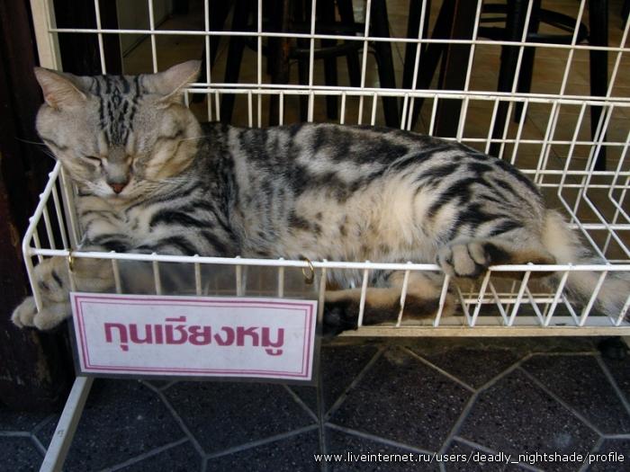 Бангкокская колбаса:)