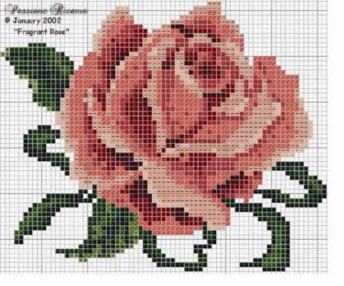 Розы крестиком.