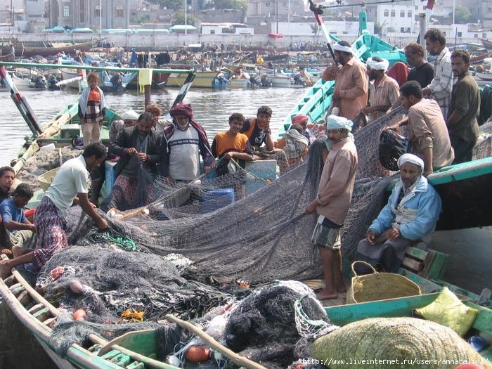 про знакомых с берега индийского океана