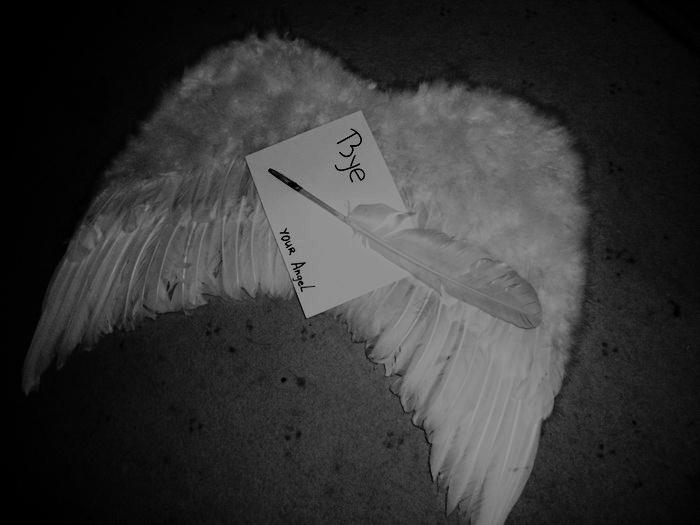 Картинки с надписями ангелы здесь больше не живут, открытки подруге