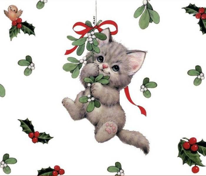 Красивые открытки с кошками для ватсапа