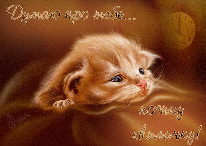 открытка думаю о тебе котенок разгаре