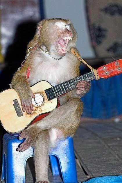 Гитарист трахает официантку, чтобы подруга ревновала