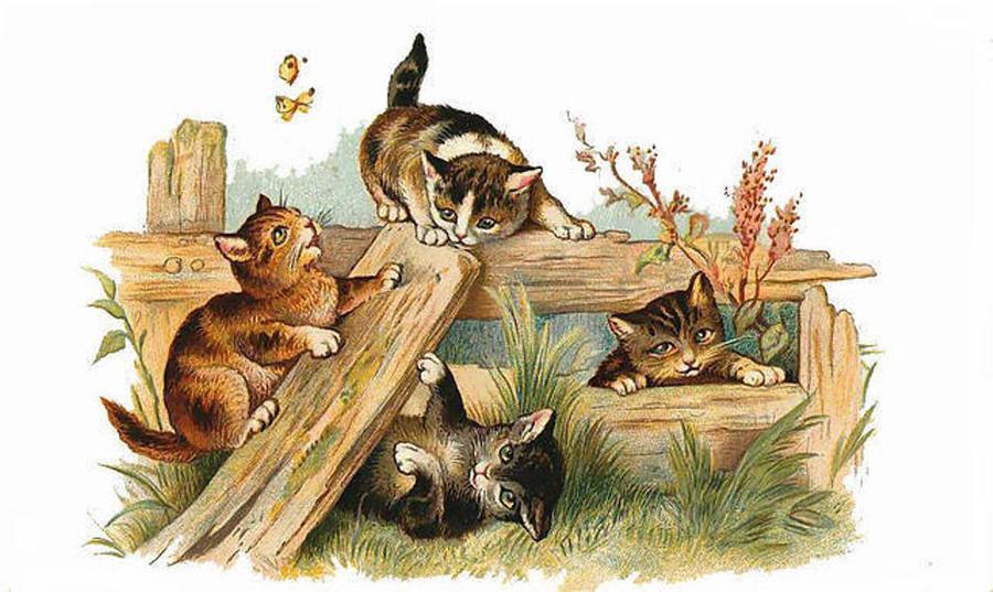 однажды картинки для декупажа коты и кошки котята единственной детали, которую