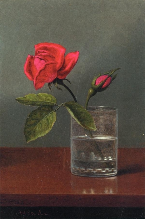 Red Rose and Bud in a Tumbler on a Shiny Table (464x700, 206Kb)
