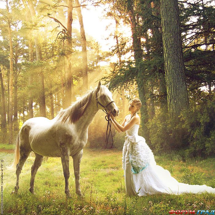 4278666_weddingpropshorse01 (700x700, 158Kb)