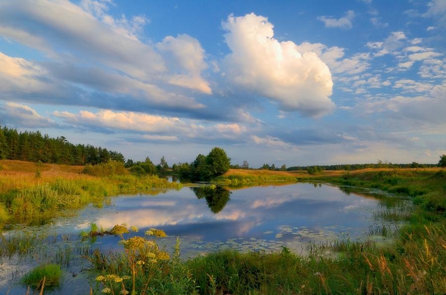 фото краски уходящего лета