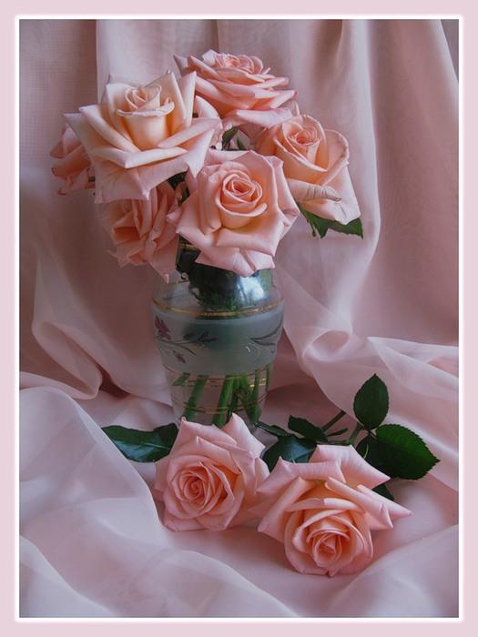 Натюрморты Розовые розы 0_23301_aa2d052a_XL (525x700, 75Kb)