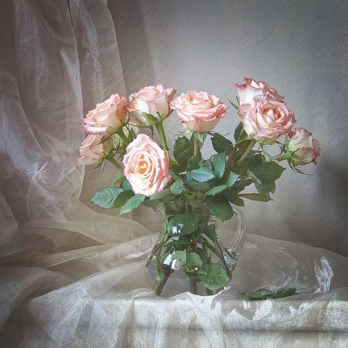 Натюрморты Розовые розы 0_4a642_8a36d3b7_XL (700x699, 154Kb)