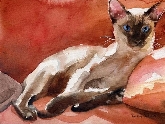 Кошачьи акварели Rachel Parkerx_0e9e5f4b (700x527, 134Kb)