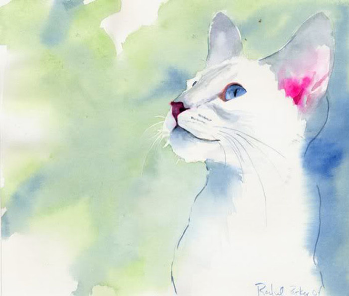 Кошачьи акварели Rachel Parkerx_cc3cd109 (700x594, 69Kb)