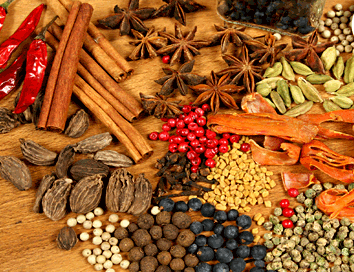 113921585_spices1.png