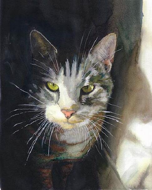 99550795_db_Alex_Carter_Cat_Into_the_Light1 (485x609, 49Kb)