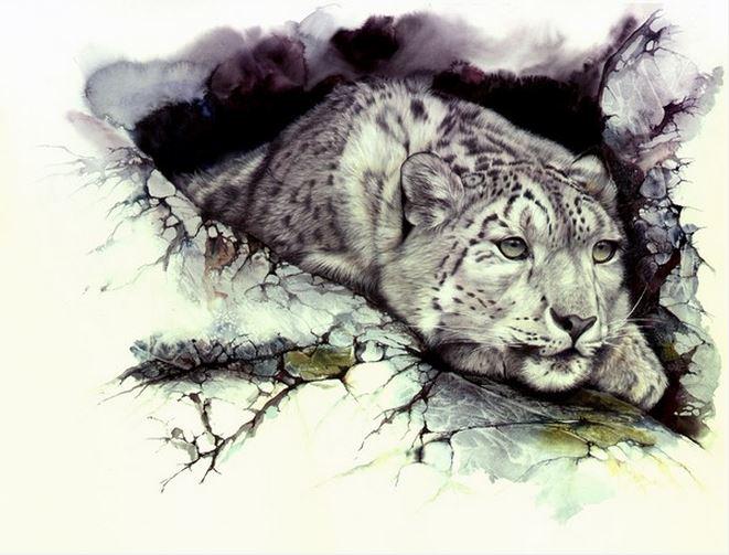 Peter-Williams.-Animalizm-v-akvareli.-Elusive-Nature. (661x503, 223Kb)