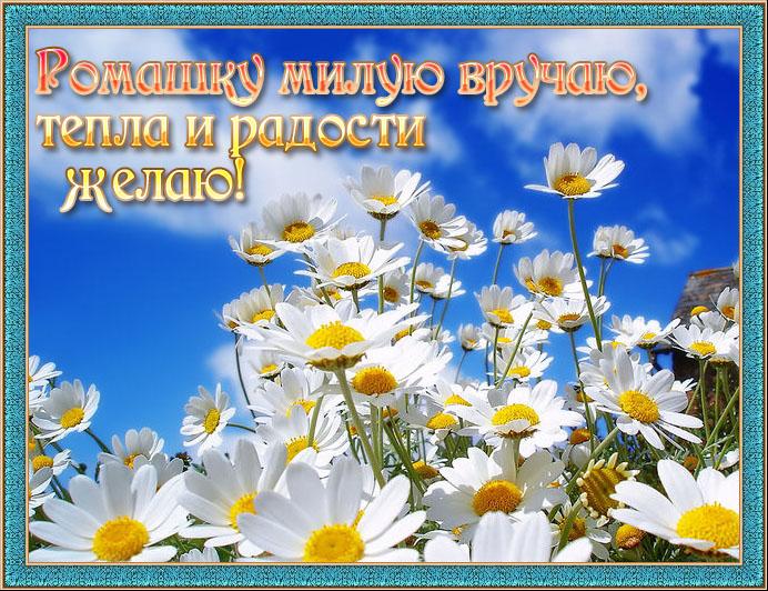https://img1.liveinternet.ru/images/attach/c/0//51/994/51994734_podarochek45667800.jpg