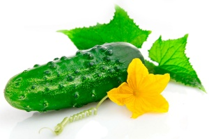 img-news-2013-february-22-cucumber (300x200, 22Kb)