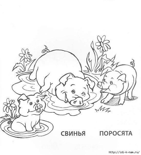 """раскраска """"Домашние животные и птицы и их детеныши ..."""
