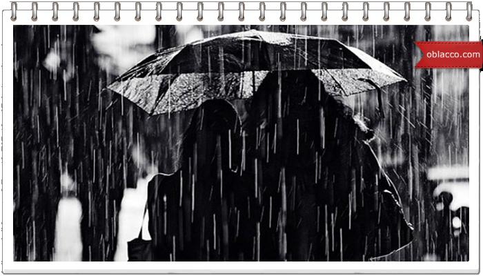 дождь стихи киев украина