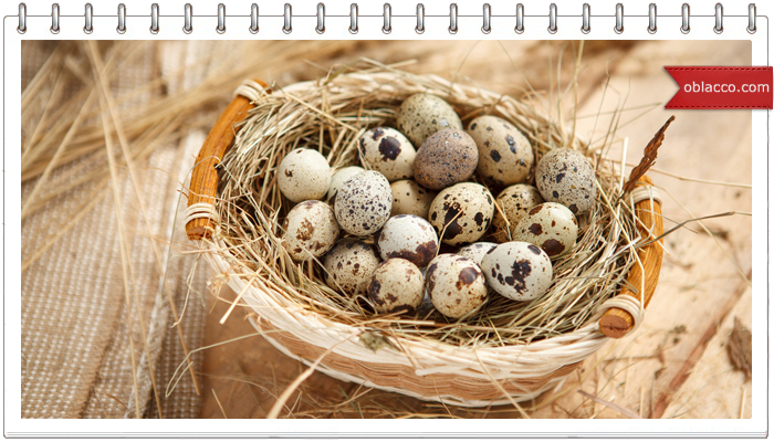 Перепелиные яйца для красоты кожи и волос