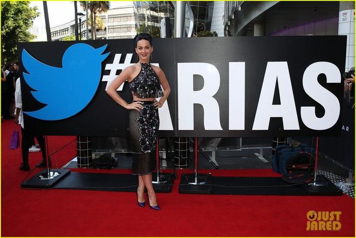 did-katy-perry-actually-dress-up-as-twisties-at-aria-awards-04 (700x468, 83Kb)
