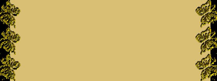фон бабочки (700x262, 80Kb)