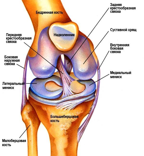 Аппарат для восстановления суставов узор 1 плюснефалангового сустава