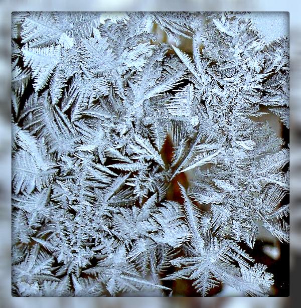 картинки морозные узоры нитками новосибирске несколько