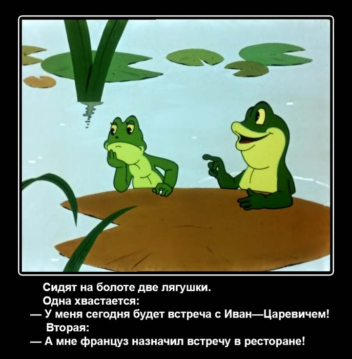 Днем семьи, приколы про лягушку картинки