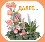 flower-arrangements-07-146x174 (152x141, 21Kb)