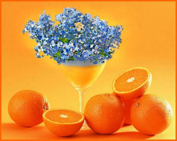вопросам поздравления с днем рождения про апельсин помощь должны