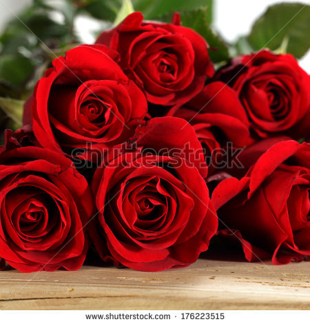 stock-photo-red-flowers-176223515 (450x470, 203Kb)