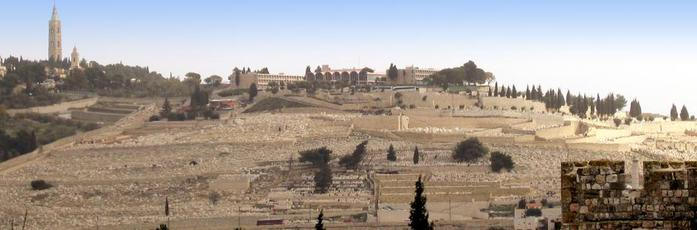 4638534_11855Mount_of_olives940x310 (700x230, 28Kb)
