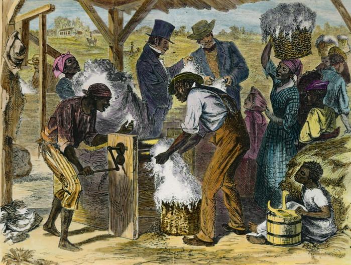 slaves 1800 1877