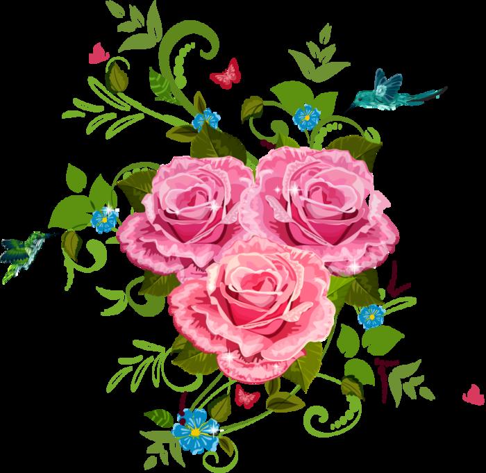 Картинка, розы в векторе для открытки
