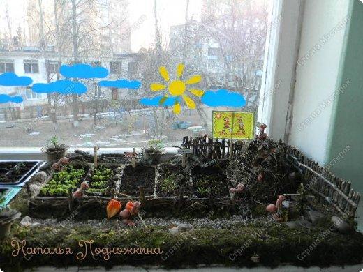 Наталья Подножкина-огород-на подоконнике-муравьишка (520x390, 195Kb)