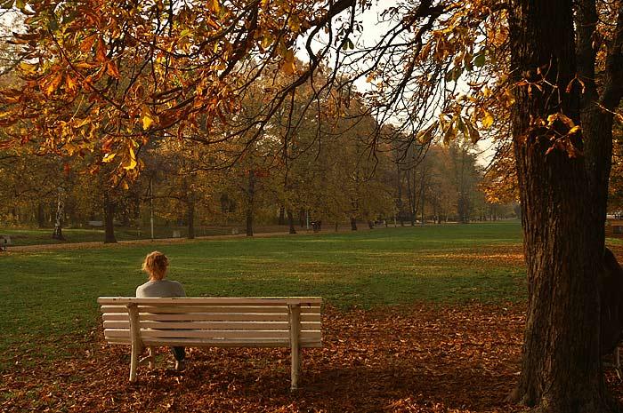 661fdfbac68 Фото Девушек Осенью В Парке Со Спины