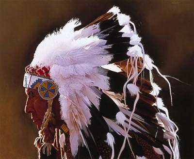 Некоторые индейские племена равнин, в особенности сиу, создали...