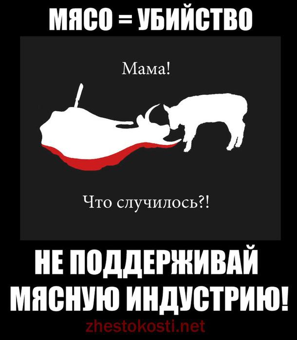 минобороны картинка как можно не любить мясо действительно очень
