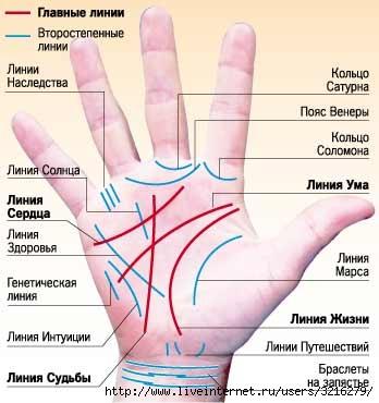 http://img1.liveinternet.ru/images/attach/c/0/45/170/45170879_linii.jpg