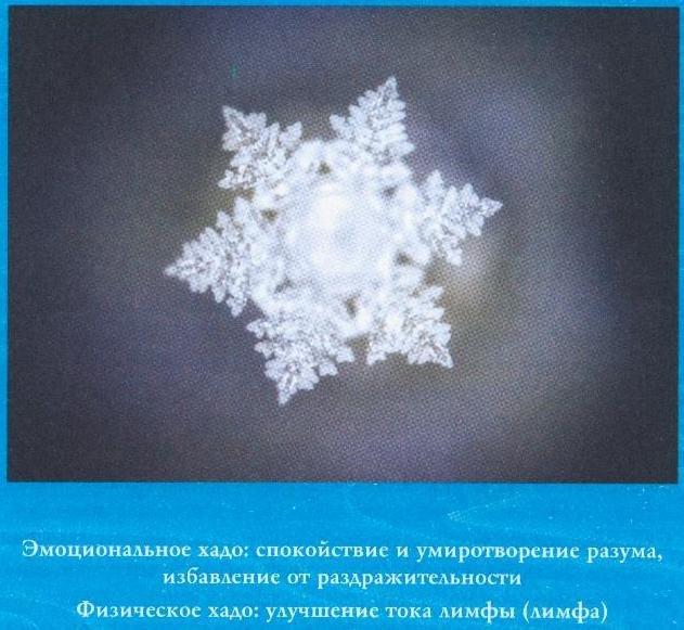масару эмото фото кристаллов воды потолочных люстр курьером