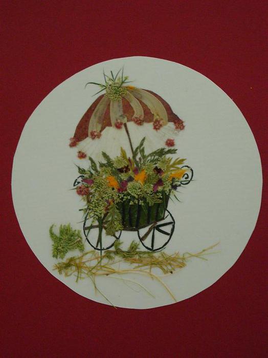Открытки по флористике, цветы