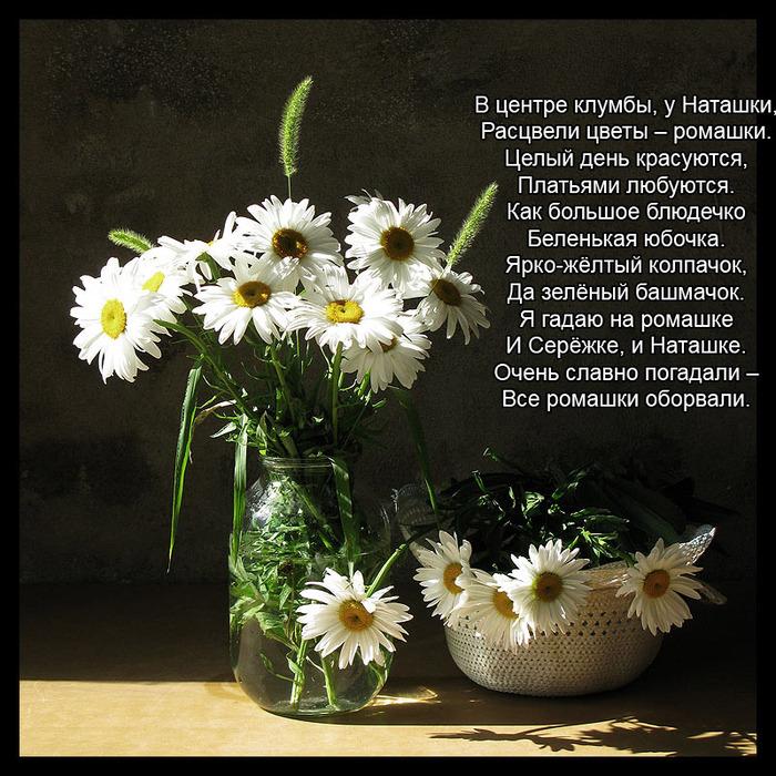 закаленным стеклом поздравления в стихах любительнице цветов одной лишь формой